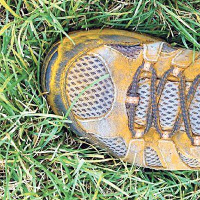 Rust Fungus (Shoe)