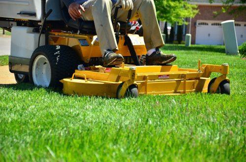 lawn care, lawn maintenance, lawn services